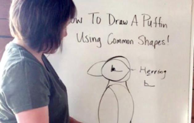 How To Draw a Puffin Using Common Shapes