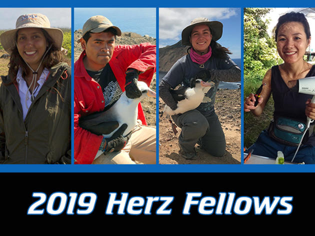 2019 Josephine Daneman Herz International Seabird Fellows