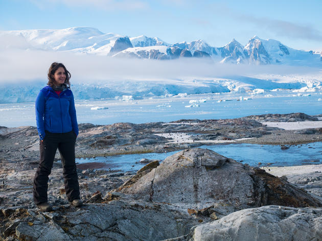 In Search of the Adelie Penguin