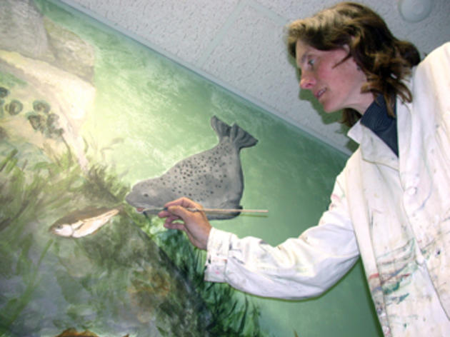 """Seabird Sue"" Schubel Named Disney Conservation Hero"