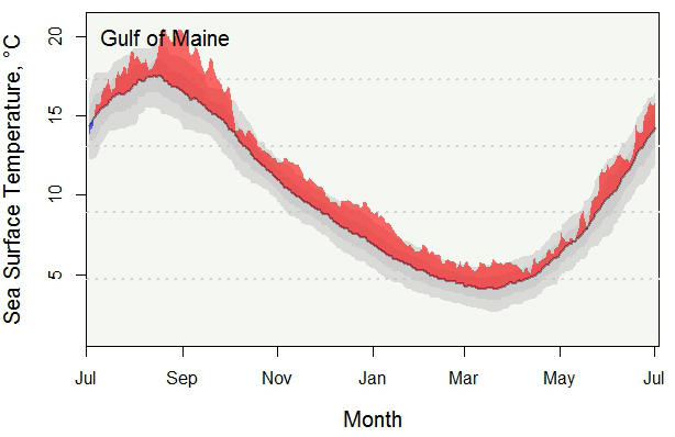 Annual Sea Surface Temperature in the Gulf of Maine