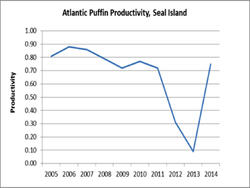 Atlantic Puffin Productivity on Seal Island