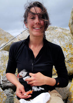 Caroline Poli with Recaptured Puffin wearing a geolocator