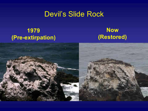 Devil's Slide Rock Comparison - Then and Now