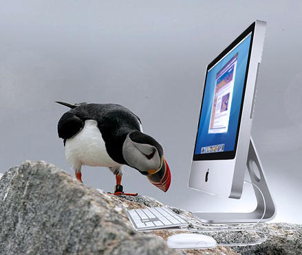 Puffin with iMac