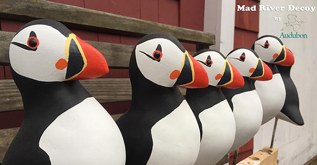 Mad River Decoys Puffins New Small