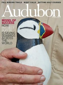 Project Puffin on Audubon Magazine Cover