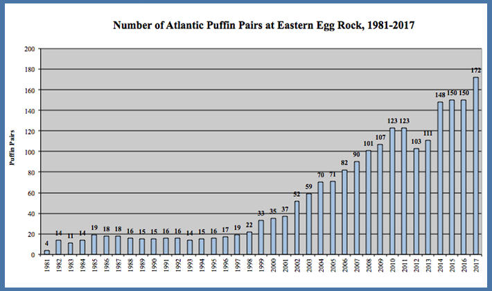 EER Puffin Pairs Graph 2017